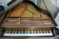 Picture of piano with strings showing to illustrate a discussion of resonance and how that explains the ability of Shungite to energetically benefit the human and animal bodies.